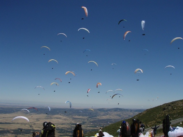 Paragliding-Cape-Town-PWC-Gaggle